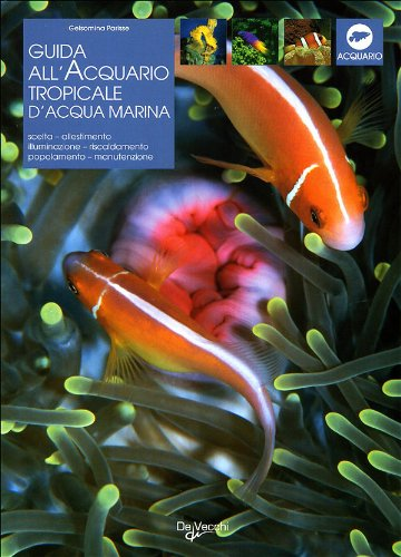 Acquario tropicale d'acqua marina