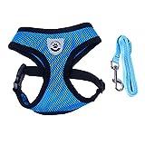 B Blesiya Hundegeschirr weich Brustgeschirr mit Leine für Hunde Training und Wandern - Blau - M
