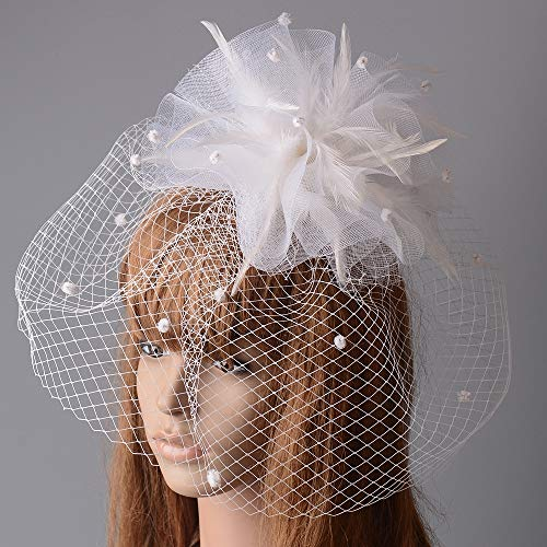 Frauen Headwear Net Mesh Veil Fascinator Feather Hat -