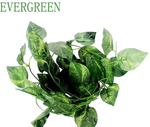 foglie-di-simulazione-foglie-di-vite-malacca-albero-finto-le-foglie-plastica-vines-sempreverde-retti
