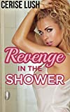 Revenge in the Shower: Taboo Unprotected Short Story