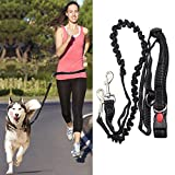Topist Hands Free Running Dog Lead / Dog Walking...