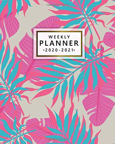 2020-2021 Weekly Planner: 2 Year Weekly & Daily View Organizer & Agenda with To-Do's, Funny Holidays & Inspirational Quotes, Vision Boards & More | Tropical Banana & Palm Leaf Pattern (Board Banana Gold)