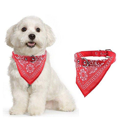 Hundehalstuch Dreieckstuch Hunde Halsband Katzenhalsband Haustier Tuch