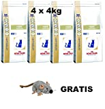 Royal Canin Fibre Response ( 4 x 4 kg ) MEGA PACK Katzenfutter + GRATIS, LANGE VARFALLSDATUM