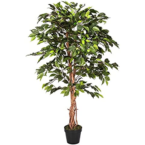 Homescapes 4 Feet Green Ficus Tree With Real Wood Stems and Lifelike Leaves Replica Artificial Plant by Homescapes - Ficus Tree Leaves