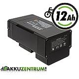 Maratron 400Wh E-Bike Pedelec Akku mit Panasonic Zellen für Ansmann 36V 11,6Ah Porta HK u.a.