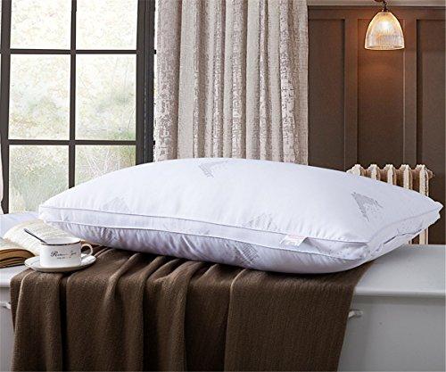 GXSCE Memory-Foam-Nackenkissen, hypoallergen & Staub Milbe Resistant White, Anti-Schnarch zu Prime Soft Supportive Komfortable waschbare Schlaf-Kissen, 45X72CM
