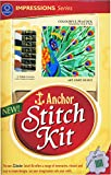 Anchor Stitch Kit - Colourful Peacock