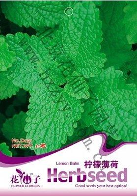 1 sac = 30 pcs rares Graines Coulerful Érable Plantes Bonsai Jardin En Pots Graines de Maple japonaise