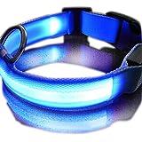 Danapp Hundehalsband mit LED-Bildschirm, wiederaufladbar, 1, Blue 28, XL