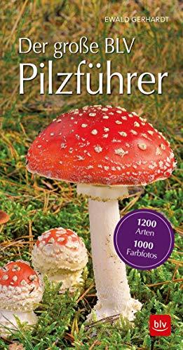 Der große BLV Pilzführer für unterwegs: 1200 Arten 1000 Farbfotos