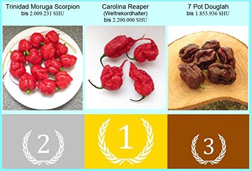 Traumgarten2014 Chili die 3 schärfsten Chilis auf der Welt Weltrekord Carolina Reaper Trinidad Moruga Scorpion 7 Pot Douglah HP22B Saatgut Samen