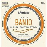 D'Addario EJ63 - Juego de cuerdas banjo