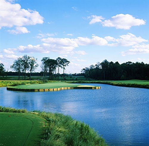 Carolina-golf-und Country Club (Panoramic Images - Pond in a Golf Course Carolina Golf and Country Club Charlotte North Carolina USA Photo Print (30,48 x 30,48 cm))