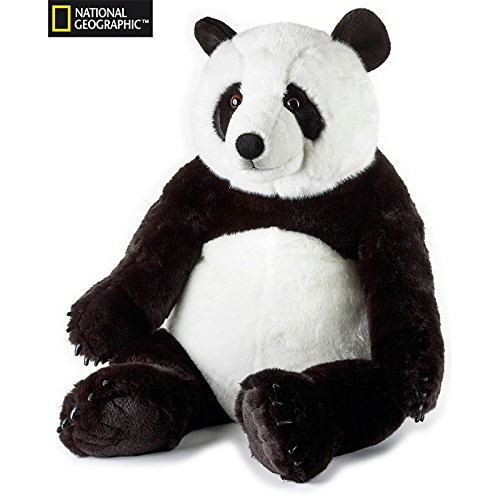 National-gographic--770808--Panda-gigante