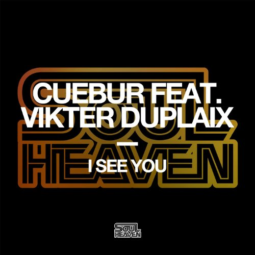 I See You (feat. Vikter Duplai...