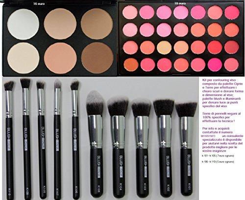 Italie blush poudre palette de maquillage Kabuki blush illuminant brosses 10