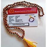 Apnisanskriti 100% Lab Certified Wooden 5 Mukhi Rudraksha Mala 108 + 1 Beats (24 Inch, 4mm each) - Brown