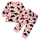 i-uend Baby Pyjamas Sets, Baby Baby Langarm Cartoon Dinosaurier Print Tops + Hosen Kleidung Outfits Für 3-24 Monate