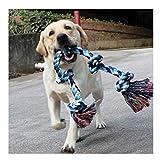 Jouets à corde pour chiens grands et forts, jouets à mâcher 5 poignées de corde pour mâcher agressifs, jouets pour...
