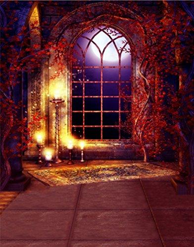 Geheimnisvolle Szene Gothic Gewölbte Architektur Boot Tür Textile Fotografie Hintergründe Bild Hintergründe Wandmalerei (Halloween-hintergrund-szene)