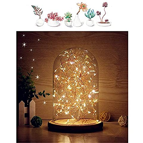 MUCHER Glass Dome Lamp Bell Jar Display Dome Bamboo Base String USB LED Warm White Light Bedside Table Lamp with LED Warm Fairy Starry String Lights ideal for Decoration Anywhere.(Warm White)