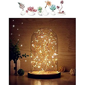 MUCHER Glass Dome Lamp Bell Jar Display Dome Bamboo Base String USB LED  Warm White Light