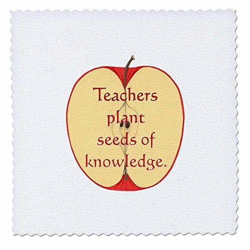 3dRose QS 27037_ 7Sliced Apple Lehrer Pflanze Samen von knowledge-quilt Platz, 18von 18