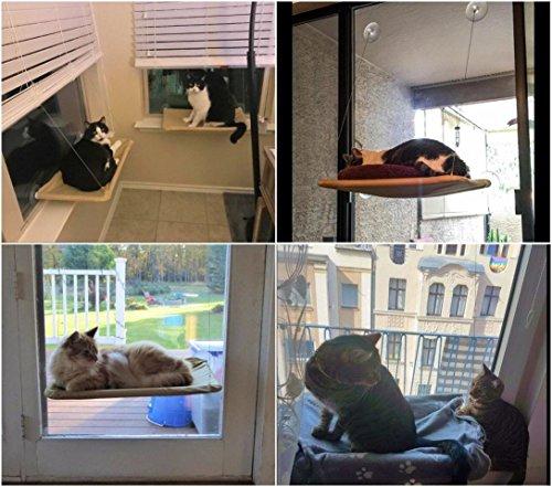 Hamac de fenêtre pour chat, pour observer en hauteur en toute sécurité