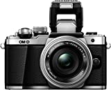 Olympus System Kamera Testbericht