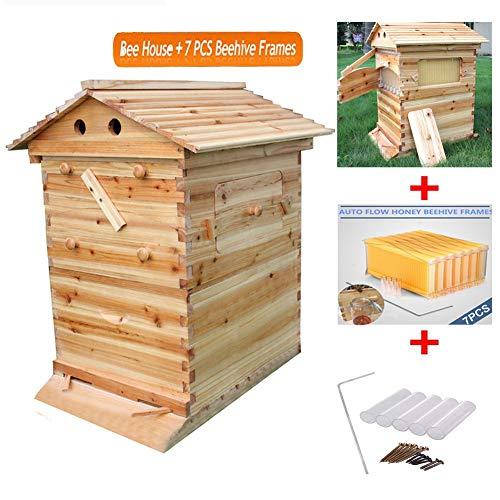 Hengyuanyi Automatisches Bienenenstockhaus aus Holz mit 7p Bienenenstock Bienenenstock und Bienenenzuchtausrüstung Bienenenzufuhr