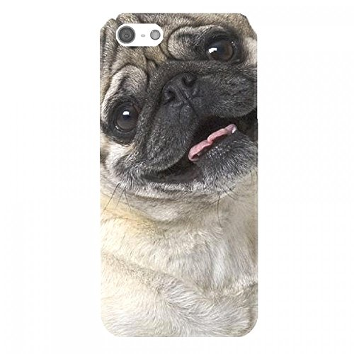 OnlineBestDigital - Animal Pattern Hardback Case / Housse pour Apple iPhone SE / Apple iPhone 5S / 5 - Tiger Pug Dog