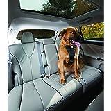 Kurgo Hunde-Sicherheits-Gurt fürs Auto - höchste Sicherheit für Dich und Deinen Hund (XS) (Schwarz)