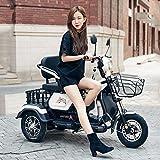 WLY Batteria al Litio ad Alta Potenza 60v20a / 48v20a / 800W del Vecchio motorino a Tre Ruote del Motociclo Elettrico Casuale disabile Casuale Adulto del Motociclo a Tre Ruote,White,60v20a