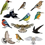 12 Brilliant Bird Window Clings by Articlings - 11 Different Birds & 1 Owl - Non-adhesive Stickers - Quickly Decorate and Brighten your Windows