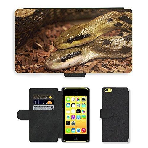 Just Mobile pour Hot Style Téléphone portable étui portefeuille en cuir PU avec fente pour carte//m00138594Serpents Reptiles Animaux Vivarium pour tête//Apple iPhone 5C