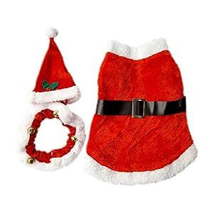 Pet Costume de Père Noël pour chien et chat, collier avec bonnet rouge et séparé, pour petit chien
