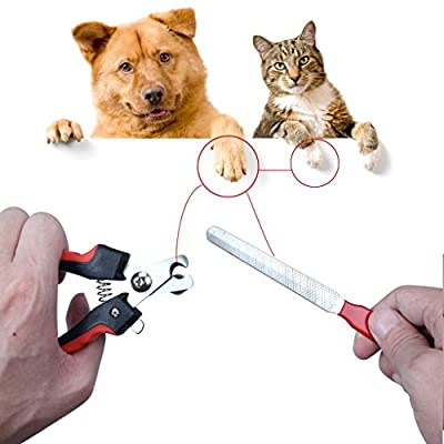 1set Pet Nail Clippers Cutter File For Dogs Cats Birds Guinea Pig Animal Claws Scissor Cut Set Kit : everything five pounds (or less!)