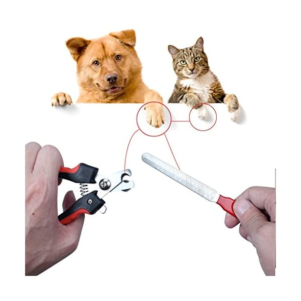 1set Pet Nail Clippers Cutter File For Dogs Cats Birds Guinea Pig Animal Claws Scissor Cut Set Kit 2