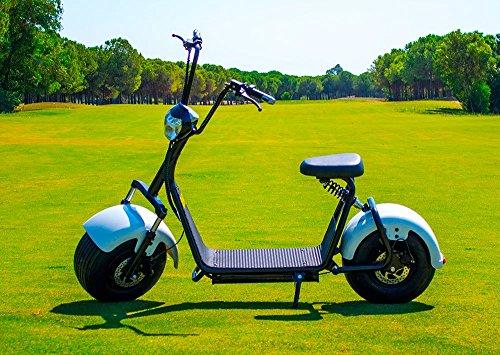 Patinete eléctrico chopper Citycoco Last Mille (III) 1000W/12Ah Negro/Blanco Moto