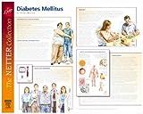 Frank H. Netter Diabetes and Complications Poster: European Netter Poster Series, 1e