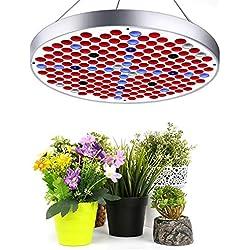 LED VOLLSPEKTRUM Pflanzenlampe, Lovebay 50W 250LED Wachstumslampe ähnlich dem Sonnenlicht, Überwintern Grow light für Büro Haus Zimmerpflanzen Garten Aquatische Pflanzen Blumen Gemüse