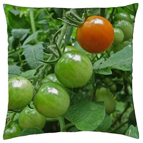 Wfispiy Growing Season - Throw Pillow Cover Case (18