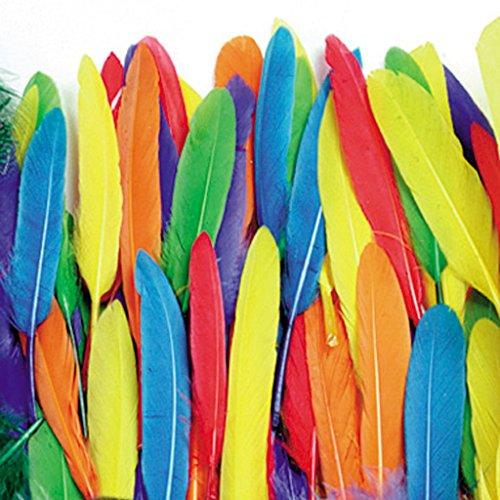 ERGEOB Gans Federn 100 stück Naturfedern 10-15cm/4-6 Zoll Länge für Art Design Basteln Karneval Rosen Montag Halloween Fest versch. Farben