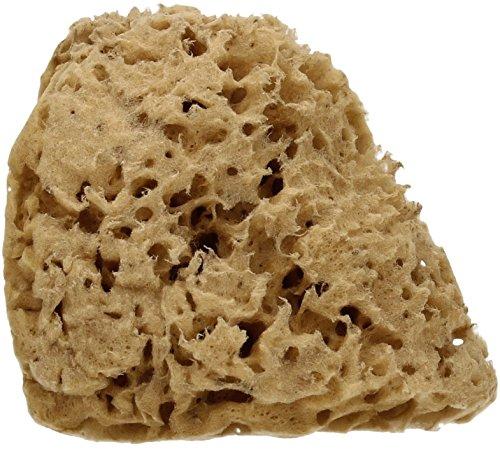 cose-della-natura-honeycomb-naturschwamm-100-naturlich-hypoallergen-antiseptisch-langlebig-fordert-d