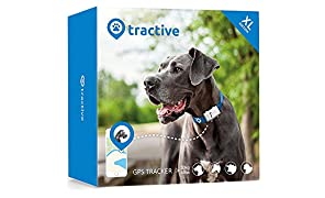 Tractive GPS XL Tracker for Dogs - waterproof pet finder collar attachment - XL Edition