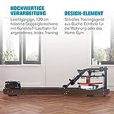 Capital Sports Stoksman 2.0 Rudergerät für zuhause Wasserruderbank aus Holz leise 120cm Doppelgleitschiene Trainingscomputer - 2