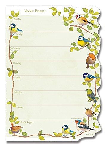 bird week weekly plan