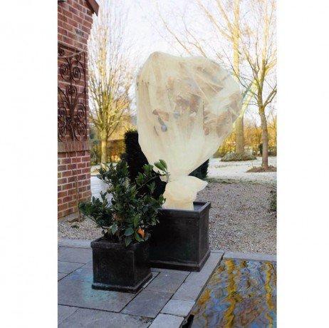 Nature Voile d'hivernage en polypropylène Beige 60gr/m² 2x5m
